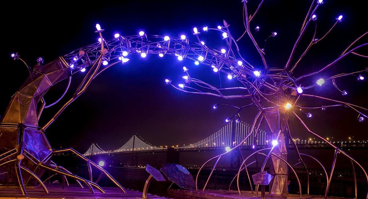 SF Sculpture FB